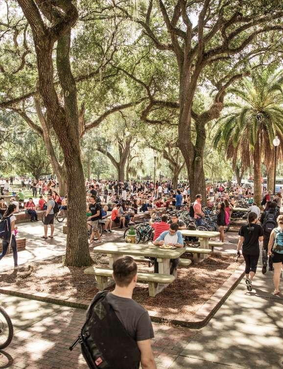 Image of students traveling through Turlington plaza