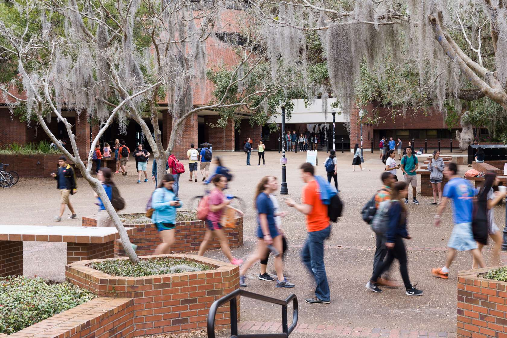 Students crossing Turlington